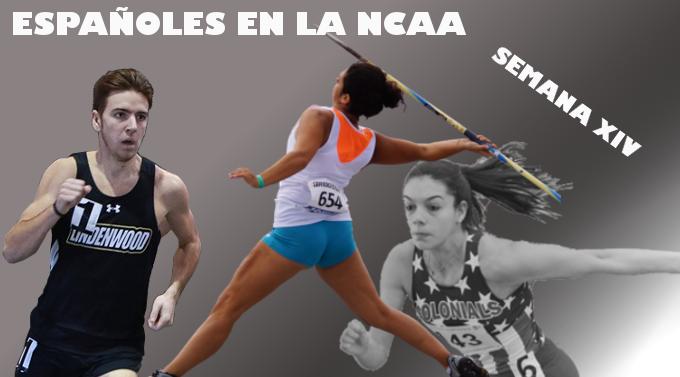 Resultados Españoles en la NCAA (XIV)