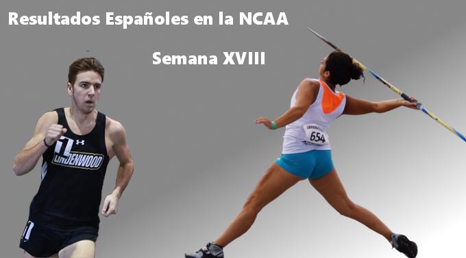 Resultados españoles en la NCAA (XVIII)